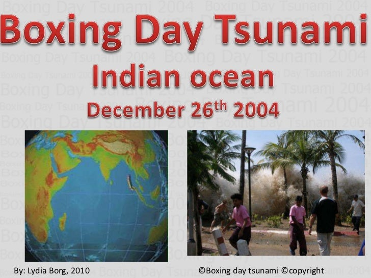 Boxing Day Tsunami 2004 Facts And Figures